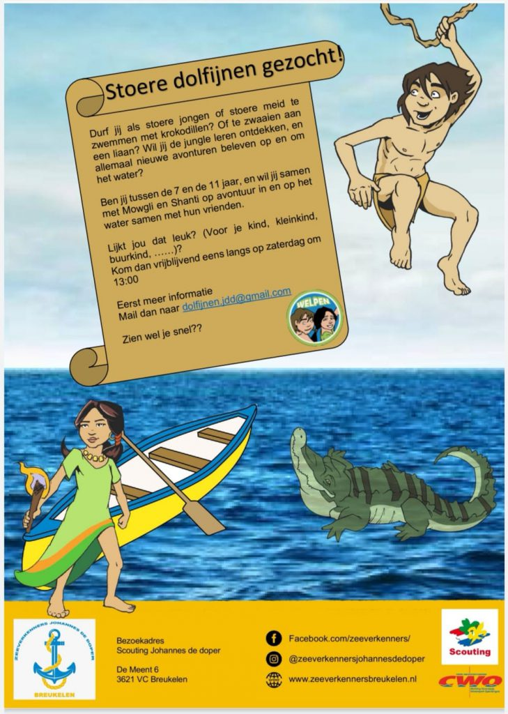 Dolfijnen Flyer